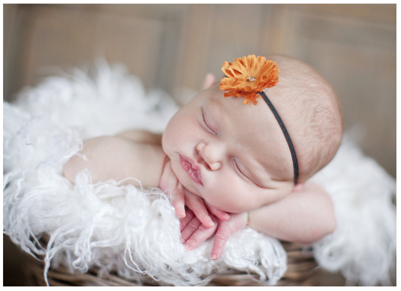 newborn photographer brooklin